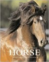 A Portrait of the Horse - Andrew Morris, Bob Langrish