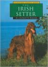 The Irish Setter - Charlotte Wilcox