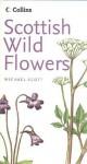 Scottish Wild Flowers - Michael Scott