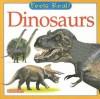 Dinosaurs - Christiane Gunzi