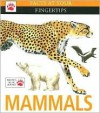 Mammals (Facts At Your Fingertips) - Amy-Jane Beer, Pat Morris