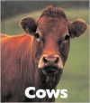 Cows - Mary Ann McDonald