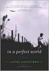 In a Perfect World - Laura Kasischke