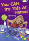 You Can Try This at Home Gold 2 - Diana Noonan