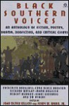 Black Southern Voices: An Anthology - John Oliver Killens, Jerry W. Ward Jr.