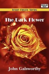 The Dark Flower - John Galsworthy