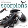 Scorpions - Valerie Bodden