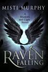 Raven Falling - Misti Murphy