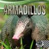 Armadillos - Sheila Griffin Llanas