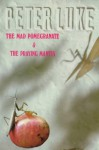 Mad Pomegranate & the Praying Mantis: An Andalusian Adventure - Peter Luke