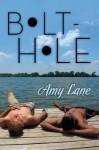 Bolt-Hole - Amy Lane