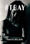 Stray (Gr8reads) - David Belbin