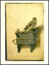 Carel Fabritius, Complete Edition With a Catalogue Raisonn±E - Christopher Brown, Carel Fabritius