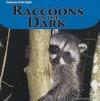 Raccoons In The Dark (Creatures Of The Night) - Doreen Gonzales