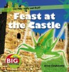 Feast at the Castle. by Anna Claybourne - Claybourne, Anna Claybourne