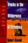 Tracks in the Wilderness of Dreaming - Robert Bosnak