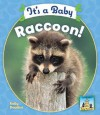 It's a Baby Raccoon! - Kelly Doudna