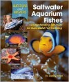 Questions and Answers on Saltwater Aquarium Fishes - Ashley Ward, Mary Ray