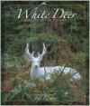 White Deer - John Bates