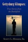 Gettysburg Glimpses: True Stories from the Battlefield - Scott L. Mingus Sr.