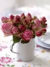 Romantic Flowers Mini Notebook Set 4 Pack - Debi Treloar