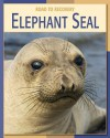 Elephant Seal (Road To Recovery) - Susan H. Gray