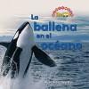 La Ballena en el Oceano = Whale in the Water - Dana Meachen Rau