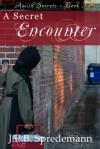 A Secret Encounter - J.E.B. Spredemann