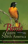 Birds of Eastern North America: A Photographic Guide (Princeton Field Guides) - Paul Sterry, Brian E. Small
