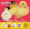 Bright Baby Touch, Feel and Listen: Duckling - Roger Priddy