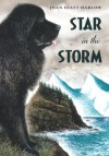 Star in the Storm - Joan Hiatt Harlow