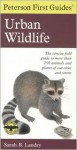 Peterson First Guide to Urban Wildlife - Sarah B. Landry, Roger Tory Peterson