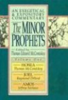 Minor Prophets, V. 1: An Exegetical and Expository Commentary (Hosea, Joel, and Amos) (Expositional Commentary) - Thomas Edward McComiskey