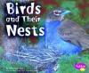Birds and Their Nests - Linda Tagliaferro