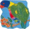 Parrot - Pam Adams