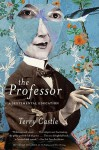 The Professor: A Sentimental Education - Terry Castle