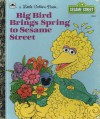 Big Bird Brings Spring To Sesame Street - Lauren Collier Swindler, Marsha Winborn