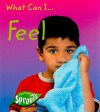 What Can I... Feel - Sue Barraclough