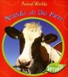 Animals on the Farm - Sue Barraclough