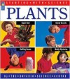 Plants - Adrienne Mason, Ray Boudreau