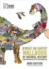 The What on Earth? Wallbook of Natural History Mini Edition: From the Dawn of Life to the Present Day - Christopher Lloyd, Andy Forshaw
