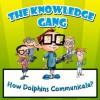 Children Book : The Knowledge Gang - How Does Dolphins Communicate (Great Book for Kids) (Age's 5 - 9) - Mary Miller, Children Book, Kids Books, Picture books