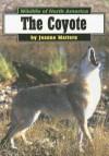 Coyotes - Joanne Mattern
