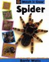 Spider (Watch It Grow) - Barrie Watts