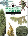 Identifying Ornamental Conifers - Richard Bird