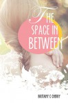 The Space in Between - Brittainy C. Cherry