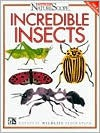 Incredible Insects - Sandra Stotsky, National Wildlife Federation