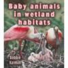 Baby Animals in Wetland Habitats - Bobbie Kalman