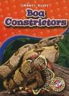 Boa Constrictors - Colleen Sexton