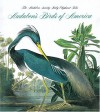 Audubon's Birds Of America - Roger Tory Peterson, Virginia Marie Peterson